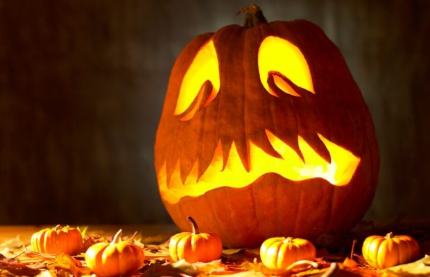 Halloween Party – 1 Year Anniversary Bull Island Brewing Co ...